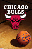 Chicago Bulls Logo Items