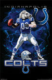 Colts Logo Theme And Stadium Wall Art
