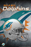 Dolphins Team Theme Posters