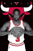 Chicago Bulls Player Posters