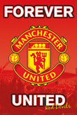 Manchester United Crest And Stadium Posters