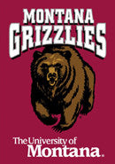 Montana Grizzlies Posters