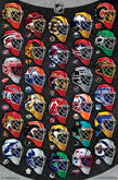 NHL Hockey Team Logo Posters