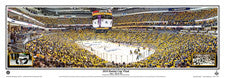 Pittsburgh Penguins Arena Posters