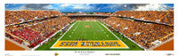 Southern Miss Golden Eagles Posters