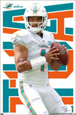 Other Miami Dolphins Player Posters