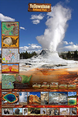 Yellowstone National Park Educational Wall Chart Poster - Eurographics Inc.