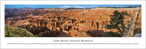 Cedar Breaks National Monument (Southern Utah) Panoramic Poster Print - Blakeway Worldwide