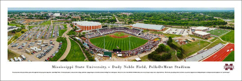 Mississippi State Bulldogs Baseball Polk-DeMent Stadium Gameday Panoramic Poster Print - Blakeway
