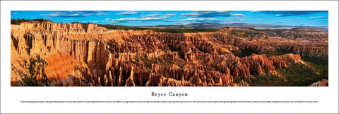 Bryce Canyon National Park (Southern Utah) Panoramic Poster Print - Blakeway Worldwide
