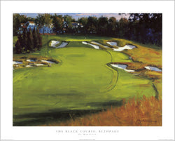 The Black Course #18, Bethpage Golf Poster Print - Image Source
