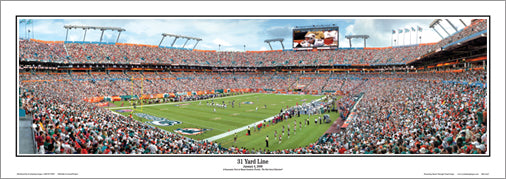 "Miami Dolphins ""Home Game"" Panoramic Poster Print - Everlasting Images"