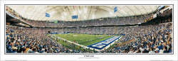 "Indianapolis Colts ""8 Yard Line"" RCA Dome 2005 Panoramic Poster Print - Everlasting Images"