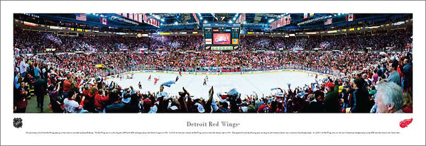 Detroit Red Wings Joe Louis Arena NHL Game Night Panoramic Poster Print (2011) - Blakeway Worldwide