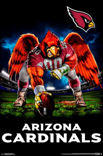 "Arizona Cardinals ""Hardcore Football"" NFL Theme Art Poster - Liquid Blue/Trends Int'l."