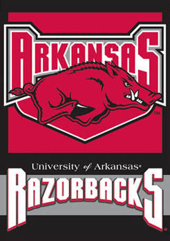 Arkansas Razorbacks Premium Banner - BSI Products Inc.