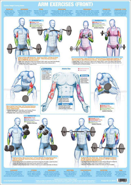 Arm Exercises (Front) Weight Training Fitness Instructional Wall Chart Poster - Chartex Products