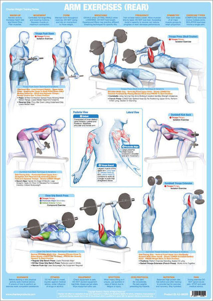 Arm Exercises (Rear) Weight Training Fitness Instructional Wall Chart Poster - Chartex Products