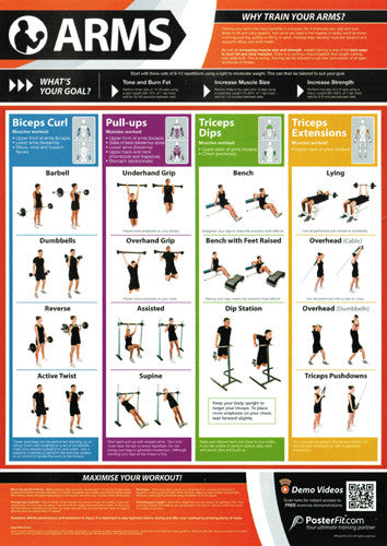 Arms Workout Professional Fitness Training Wall Chart Poster (w/QR Code) - PosterFit