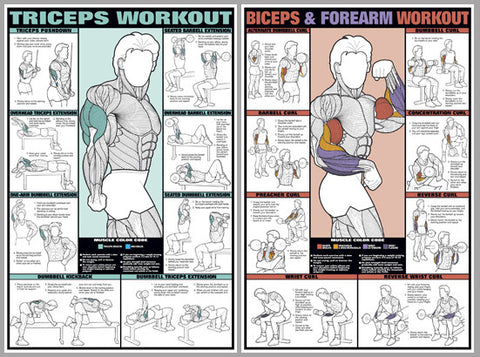 arm workout instructional 2 poster professional fitness wall chart