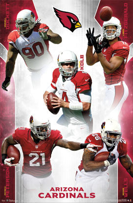 "Arizona Cardinals ""Five Stars"" (2012) NFL Action Poster - Costacos Sports"