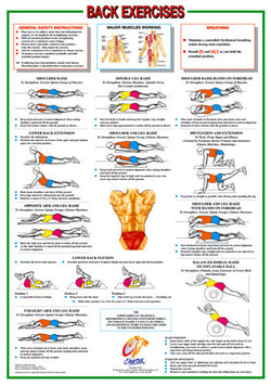 Back Exercises Wall Chart Poster - Chartex Ltd. (UK)