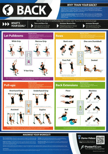 Back Workout Professional Fitness Training Wall Chart Poster (w/QR Code) - PosterFit