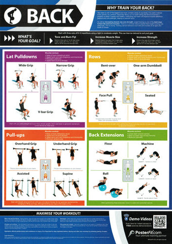 Back Workout Professional Fitness Training Wall Chart Poster W QR Code