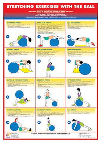 stretching exercises with the ball fitness wall chart
