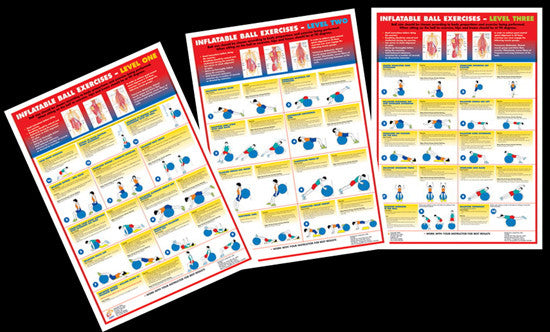 Inflatable Ball Exercises Instructional Wall Chart Combo (3) - Chartex