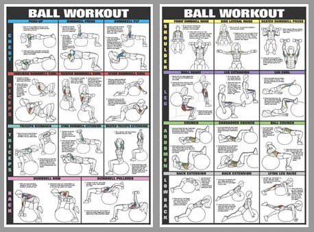 Swiss Ball Workout 2-Poster Professional Fitness Wall Chart Combo - Fitnus Posters Inc.
