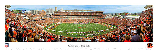 Cincinnati Bengals Gameday Panoramic Poster Print - Blakeway Worldwide