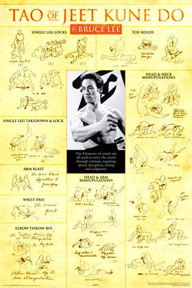 "Bruce Lee ""Tao of Jeet Kune Do"" Martial Arts Instructional Poster - Aquarius Inc."