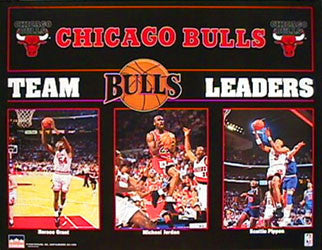 Chicago Bulls Team Leaders (1993) - Starline 16x 20