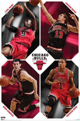 "Chicago Bulls ""Four Stars"" - Costacos 2009/10"