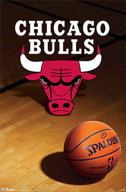 Chicago Bulls Official NBA Basketball Team Logo Poster - Costacos Sports