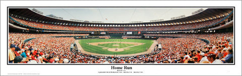 "St. Louis Cardinals Busch Stadium ""Home Run"" (1996) Panoramic Poster Print - Everlasting Images"