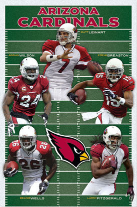 "Arizona Cardinals ""Gridiron Five"" (2010) - Costacos Sports"
