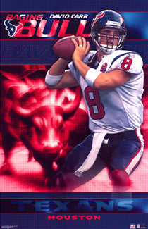 "David Carr ""Raging Bull"" Houston Texans Poster - Starline 2002"