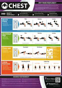 Chest Workout Professional Fitness Training Wall Chart Poster (w/QR Code) - PosterFit