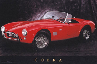 """Cobra"" (AC Shelby Cobra Classic) - NMR Distribution"