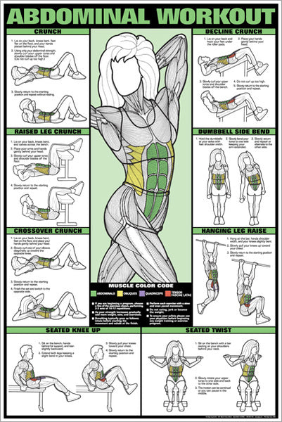 Abdominal Core Workout Professional Fitness Wall Chart Poster (Co-Ed Edition) - Fitnus Corp.