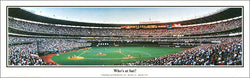 "Cincinnati Reds Riverfront Stadium ""Who's at bat?"" (1998) Panoramic Poster Print - Everlasting"