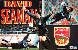 "David Seaman ""Highbury Glory"" Aresnal FC Goalkeeper Poster - Starline 1995"
