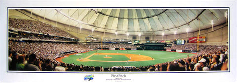 "Tampa Bay Rays Tropicana Field ""First Pitch"" (1998) Panoramic Poster - Everlasting Images"