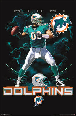 "Miami Dolphins ""On Fire"" NFL Theme Art Poster - Costacos Sports"