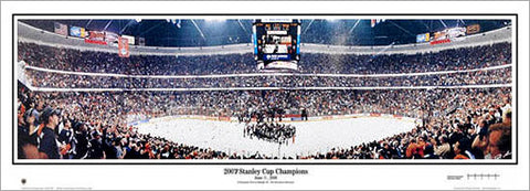 Anaheim Ducks 2007 Stanley Cup Champions Panoramic Poster Print - Everlasting Images