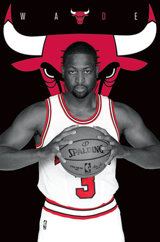 "Dwyane Wade ""The Horns"" Chicago Bulls NBA Basketball Poster - Trends International 2016"