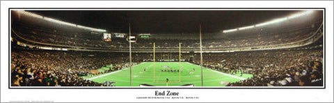 "Philadelphia Eagles Veterans Stadium ""End Zone"" Panoramic Poster Print - Everlasting Images 1997"