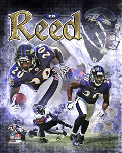 "Ed Reed ""Superstar"" Baltimore Ravens Premium Poster Print - Photofile 16x20"